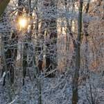 winterzon2